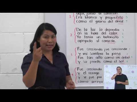Primaria 3º y 4º clase: 38 Tema: Estructura de un poema