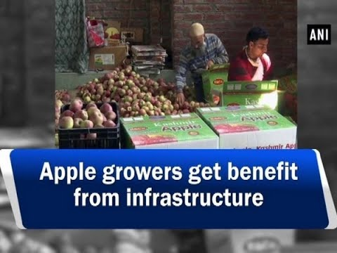 Apple growers get benefit from infrastructure - #ANI News