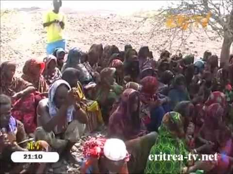 Eritrean News - Tigrinya - 4 June 2014 - Eri-TV