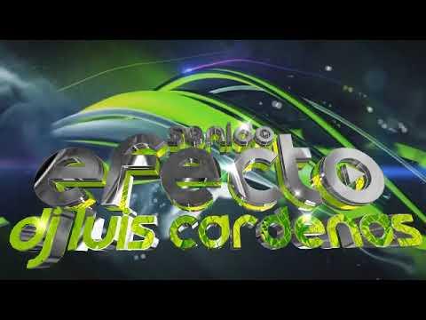 Selena Y Los Dinos Megamix 2019 Luis Cardenas Dj Sonido Efecto