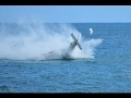 PLANE CRASH - CARIBBEAN SEA off St. Maarten 2 Dead
