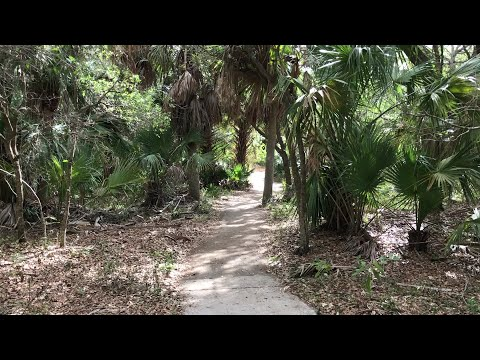 Video: Frenchman's Forest Natural Area in Palm Beach Gardens