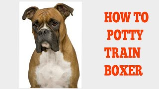 How To Easily House Train Boxers