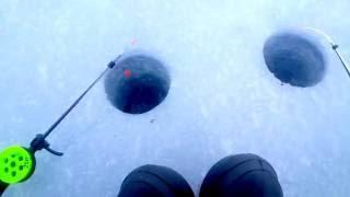Рыбалка на озере Отрадное