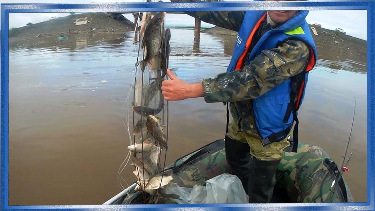 Рыбалка на амуре хапугой