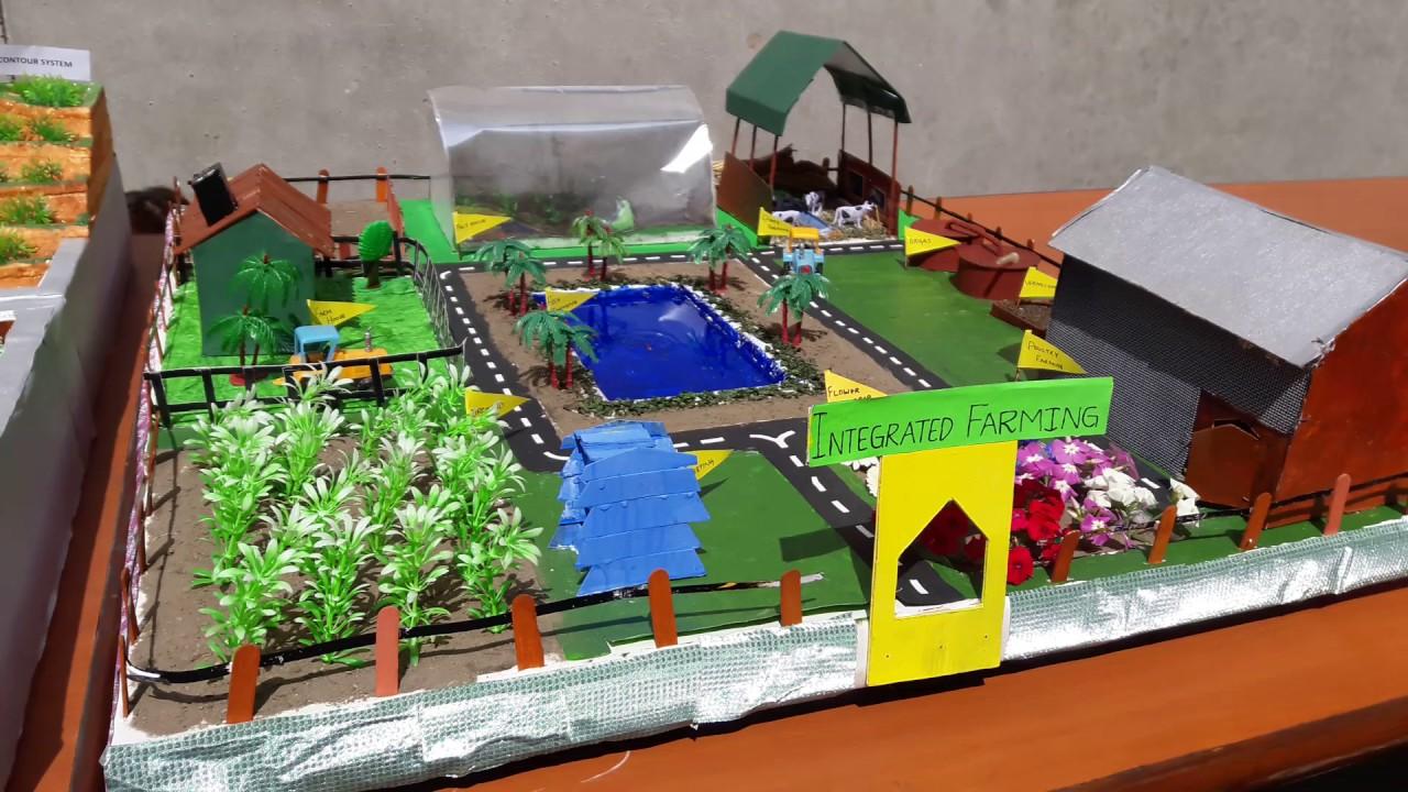 Integrated Farming Model Rimt University Youtube