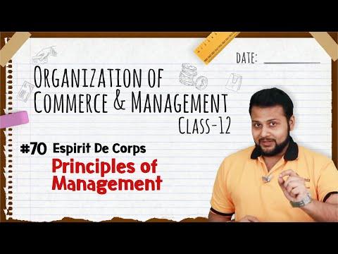 Espirit De Corps - Principles Of Management - Class 12 OCM