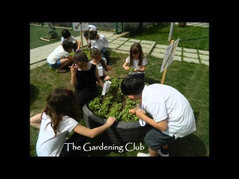 Sustainable education Avenor College TSL2015 Schools Sustainability Challenge