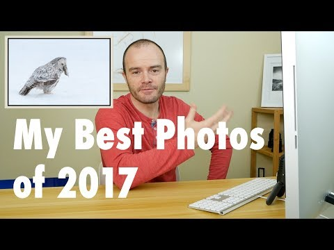 I Reveal My Best Photos of 2017 | Landscape and Wildlife Photography