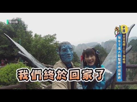 【愛玩客TOP】全球推爆