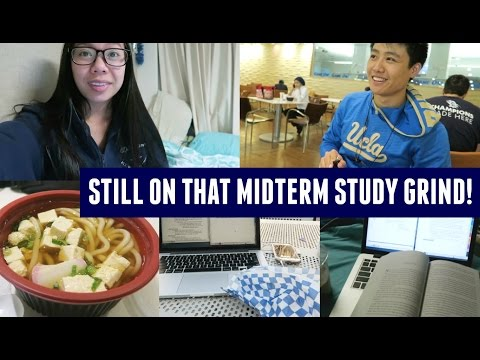 Studying for International Law & Food Studies Midterms