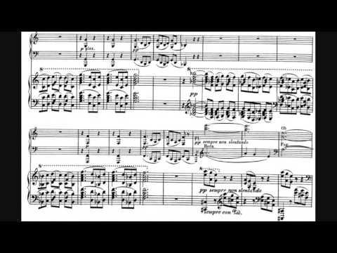 Julius Röntgen - Piano Concerto No. 2