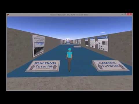 Visionary Leadership Virtual World Experiences