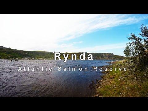 Salmon Fishing On The Fabulous Rynda River In Russia
