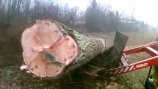 7 na typowej wsi ścinka drzew