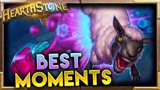 Best Moments 80 | Hearthstone Gadgetzan