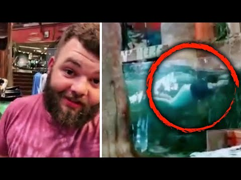 Man Jumps In Bass Pro Shop Fish Tank For TikTok Followers