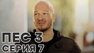 Сериал ПЕС - все серии - 3 сезон - 7 серия - смотреть онлайн