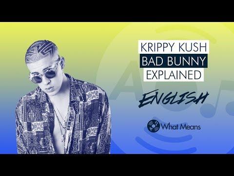 Krippy Kush Bad Bunny Farruko Lyrics Explained In English By a Latino