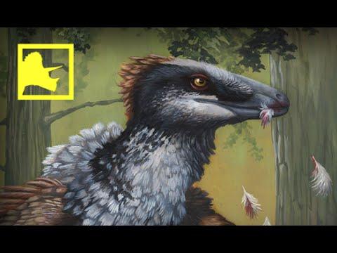 Giant Raptor discovered in South Dakota | Prehistoric News