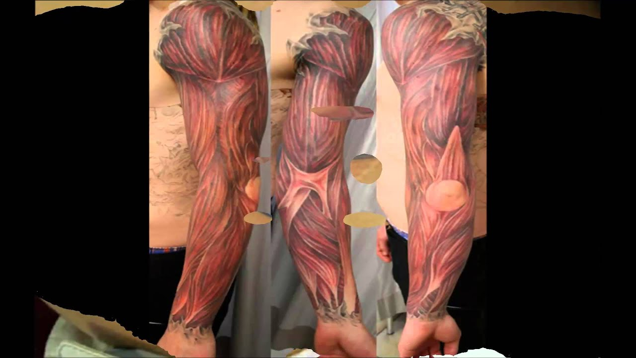 anatomische tattoos youtube. Black Bedroom Furniture Sets. Home Design Ideas