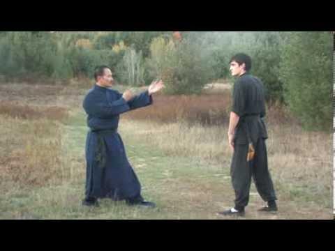 Wing Chun Bridging