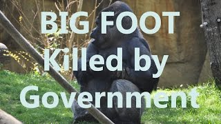 Bigfoot Sasquatch Being Secretly Killed by Government