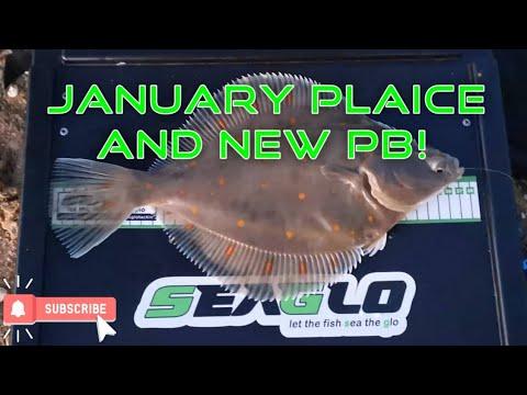 January Sea Fishing For Plaice - New Pb! Seaford Beach