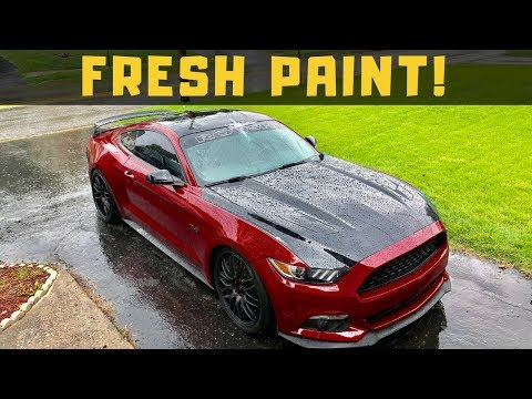 Starting Final Assembly! Wrecked Budget Mustang GT Build Part 4