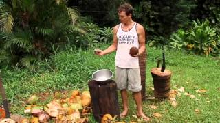 Open Coconuts using just a rock!