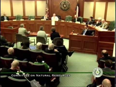 Linda Curtis, Independent Texans, Testimony