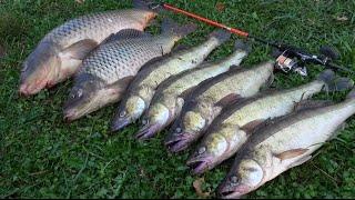 Жесть рыбалка. Ловля огромных карпов и судака на силиконовые приманки Crazy fishing