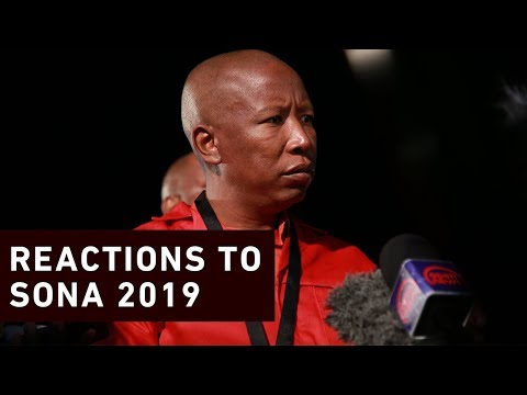 Politicians react to Ramaphosa's Sona