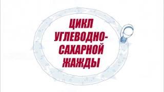 ДИЕТА АТКИНСА В ТРЕХ МИНУТАХ!