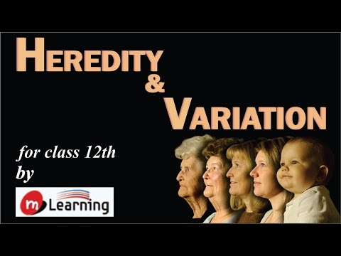 HEREDITY & VARIATION: INTRODUCTION OF GENETICS - 01 For Class 12th and AIPMT