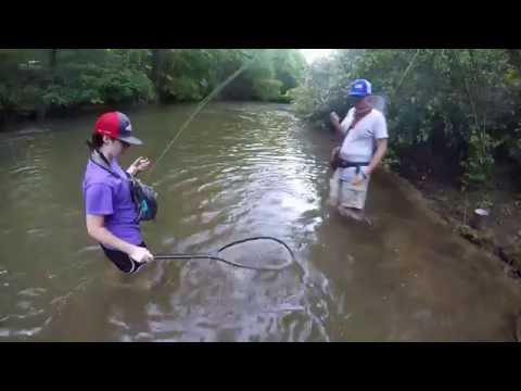 Fly Fishing At Rivers Edge On The Soque