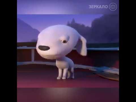 Anjing Manis