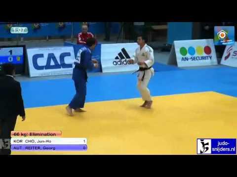 Jun-Ho Cho (KOR) - Georg Reiter (AUT) [-66kg]