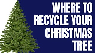 Where Can I Drop Off My Christmas Tree In Phoenix?