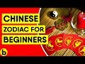 The Chinese Zodiac For Beginners