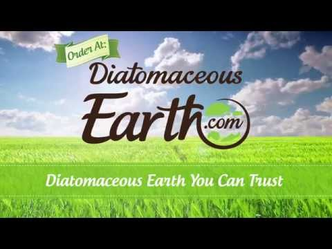 Buy Diatomaceous Earth Food Grade 10 lbs Only $19.99