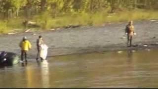 Разоблачение ментов и чиновников - браконьеров.mp4