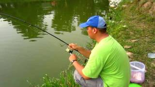 "fishing Rohu ""fish valley""july2011"