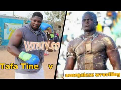 Senegalese Wrestling : Tafa Tine vs Yekini (jr)