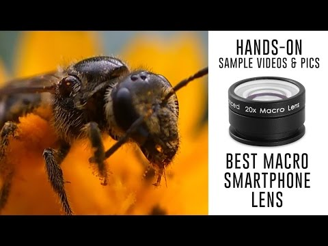 Best Macro Lens for Smartphones - Sample Videos Photos with Redmi Note 3 Camera
