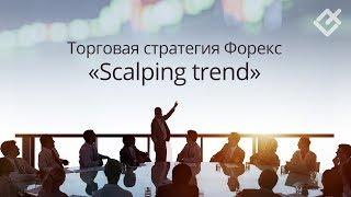 Торговая стратегия Форекс «Scalping trend»