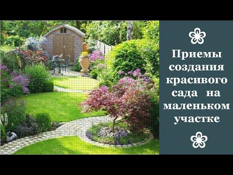 ❀ Приемы создания красивого сада на маленьком участке