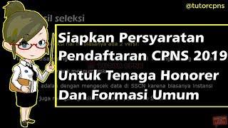 Download Video Persyaratan & Pendaftaran CPNS 2019   Tenaga Honorer & Umum MP3 3GP MP4