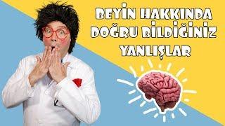 İnsan Beyni Ne Kadar Bilgi Depolayabilir? | Prof. Gügü