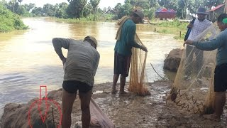 net fishing stream | net fishing Kampucha | net fishing  khmer vdeo